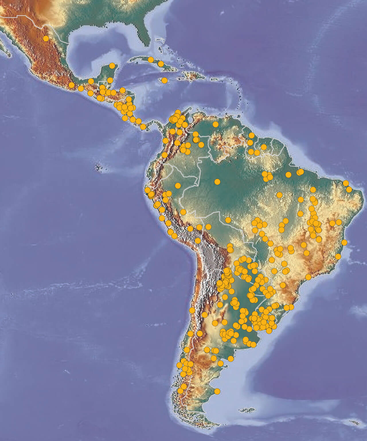 LM-LAC-Casos-Mapa